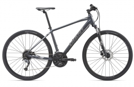 Giant Roam 2 Disc (2019)