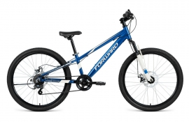 Forward Rise 24 2.0 Disc (2019)